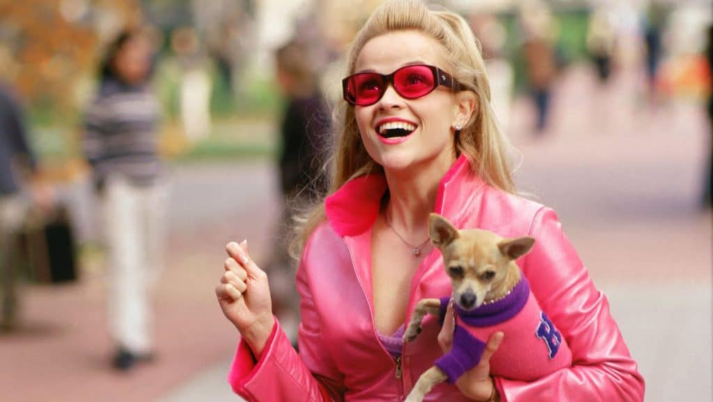 Were You Influenced to Become a Lawyer by Elle Woods? 1