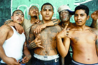 """""""Angel Dust"""" Arrests in LA Following Task Force Investigation into Crips Gang and Others 1"""