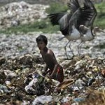 Lawyers Benefiting From Booming Environment Law Issues in India 5