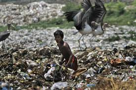 Lawyers Benefiting From Booming Environment Law Issues in India 2
