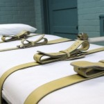 Law Council of Australia Reaffirms Opposition to Death Penalty 8