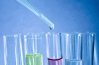 Understanding Drug Testing at Work and Employee Rights 2