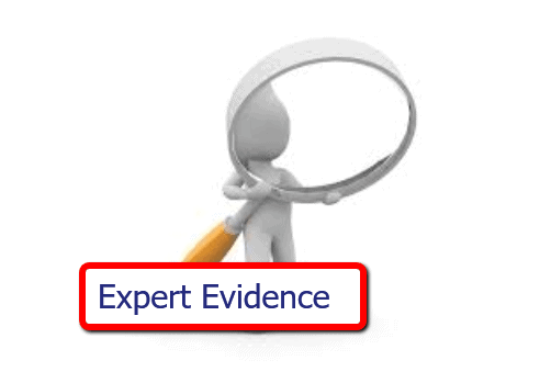 Using Expert Witnesses to Improve Your Mediation Success 2