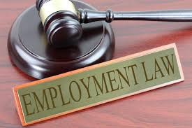 How To Easily Choose A Law Firm for Employment Law Issues 6