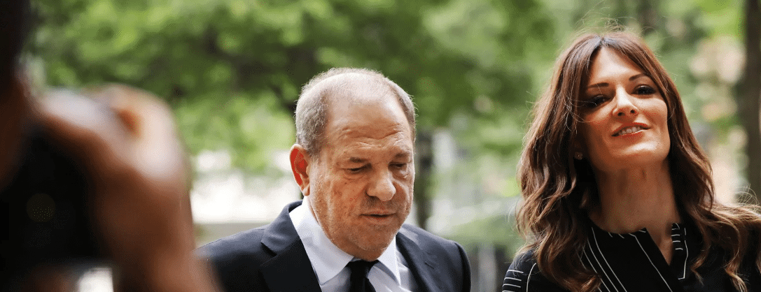 The Harvey Weinstein Case: Harvey Weinstein's Anti-Metoo Lady Lawyer (And 5 Things You Should Know) . . Updated 5