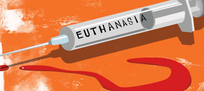Confusion Reigns Over Euthanasia Law For New Zealanders 11