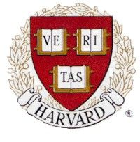 Harvard and the Rape Cases 2