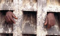 Does New Zealand need a Modern Slavery Act? 7